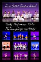 Texas Ballet Theater School - Fort Worth