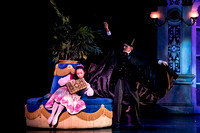 Nutcracker matinee pc Sharen Bradford-4678