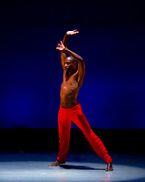 Alvin Ailey ADT-0017