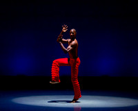 Alvin Ailey ADT-0091