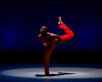 Alvin Ailey ADT-0096
