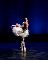 Dying Swan_0299