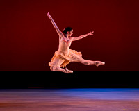 2014 Stars of American Ballet Public Gallery