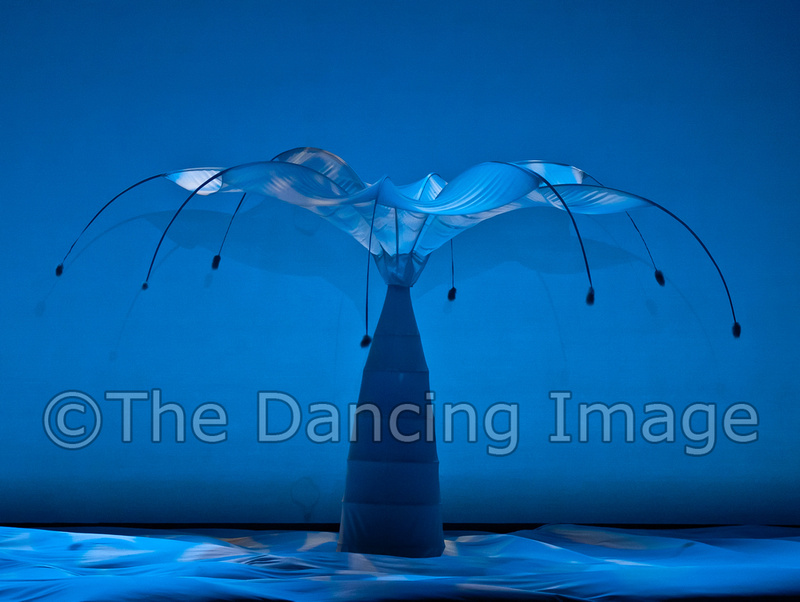 Review: MOMIX's Botanica in New York City