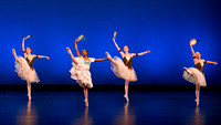 Lake Cities Ballet-0099